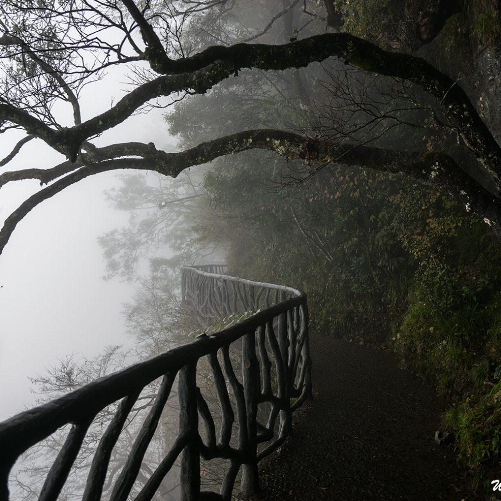The Cliff-Hanging Walkway